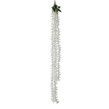 Descente de Lys blanc 165cm