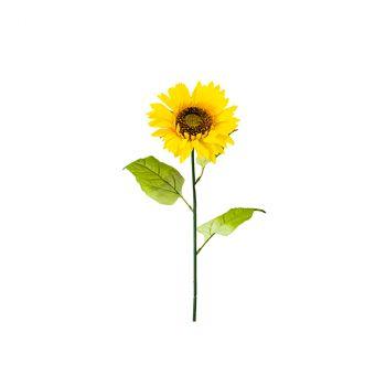 Tournesol 65cm jaune