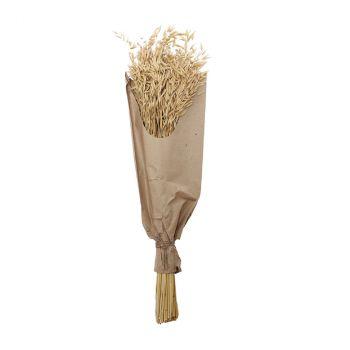 Bouquet avoine 70 cm naturel