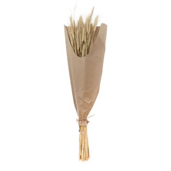 Bouquet épi blé naturel 70cm environ 40 tiges