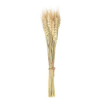 Bouquet épis de blé 35cm