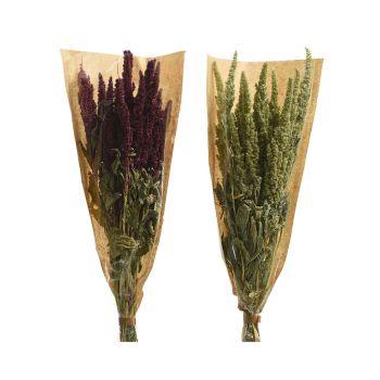 Bouquet fleurs séchées 2ass 50cm