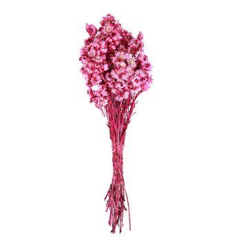 Bouquet fleurs séchées rose 30cm