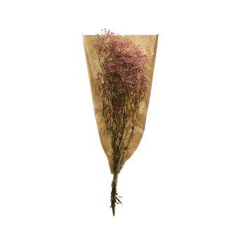 Bouquet gypse séchée 50cm