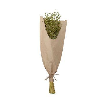 Bouquet lin 60cm vert clair