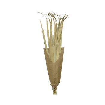 Bouquet palme naturel 110cm