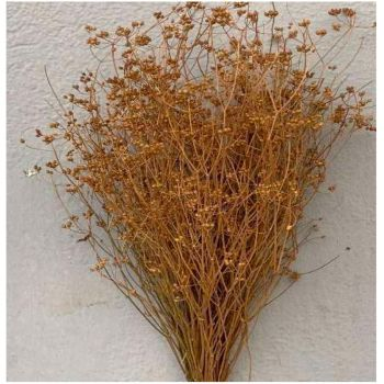 Bouquet parsi grassieux 60cm naturel
