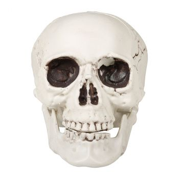 Crâne halloween 21x17x18cm