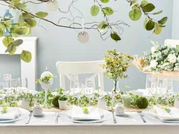 Table Herbier Botanic