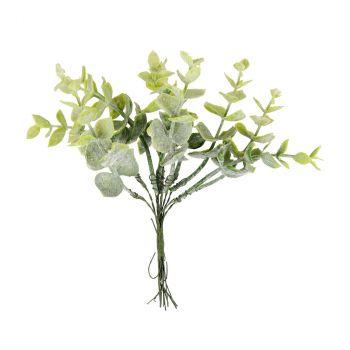 Branche eucalyptus 17cm x10