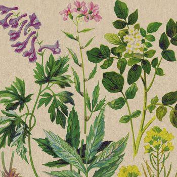 Lot de 20 serviettes motif botanique 33cm
