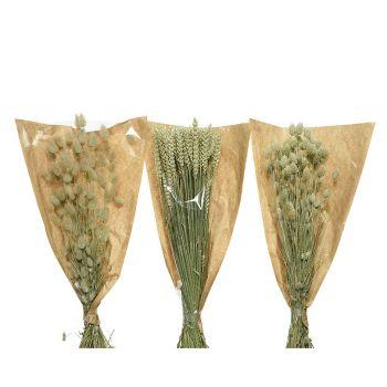 Lot de blé séché 60cm 3 couleurs au choix