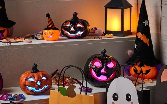 PROFESSIONNELS : c'est bientôt Halloween, pensez à vous équiper !